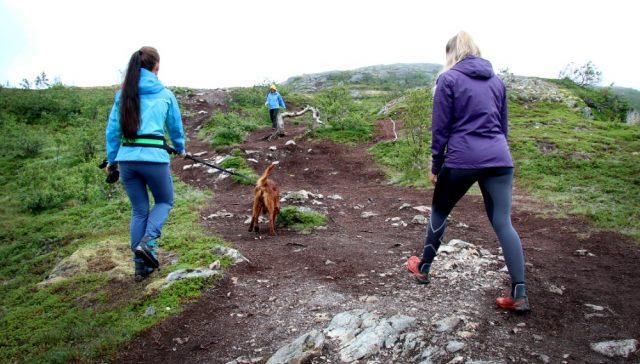Read more about the article – Utenlandske turister utfordrer sikkerheten i fjellet