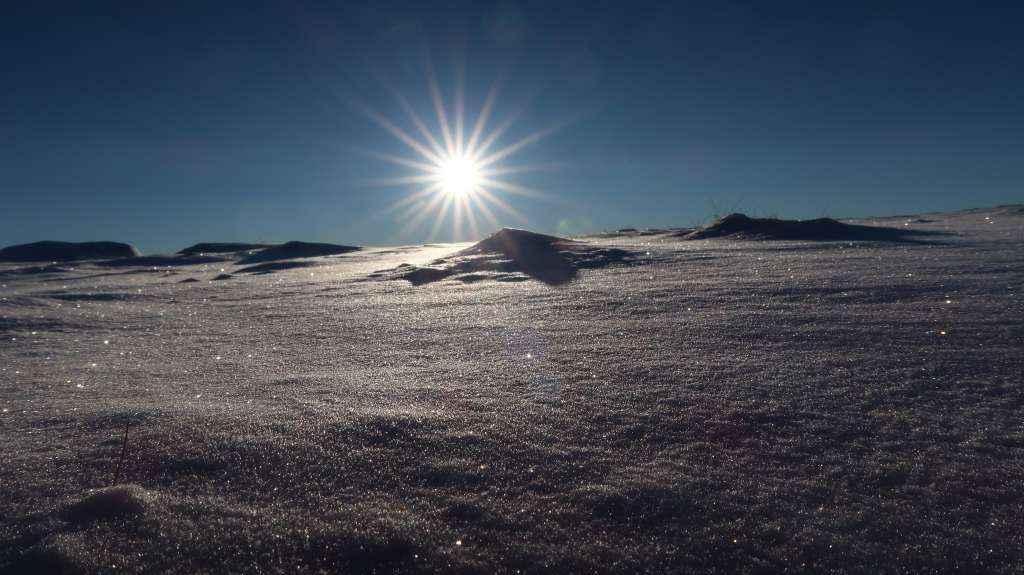 Grøthornet 1013 moh. 06.11.2016