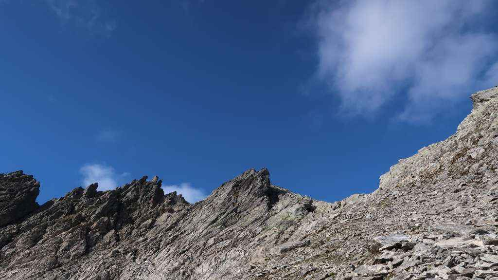 Dalegubben 1344 moh. 02.09.2017