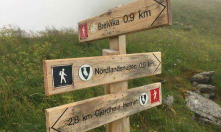 Nordlandsnupen 450 moh. 02.08.2017